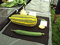 Wirral flower and vegetable show - DSC08216.JPG