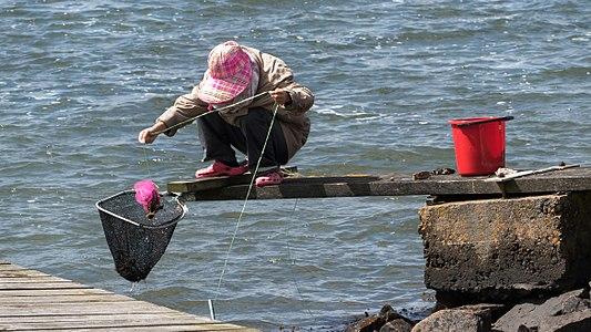 Woman fishing for shore crabs
