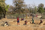 Women working on road repairing, Umaria district, Madhya Pradesh, India