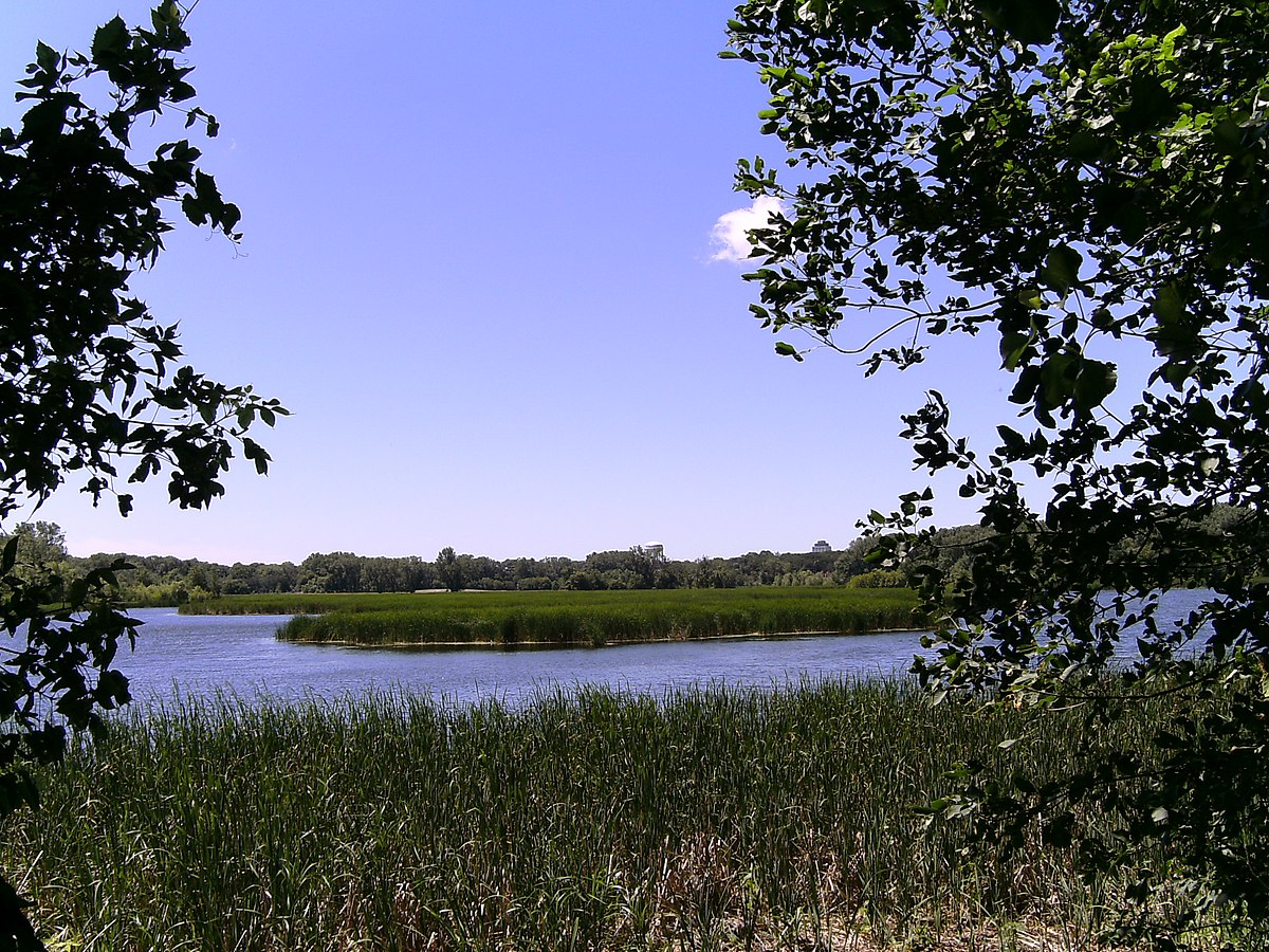 Wood Lake Nature Center In Richfield Dogs