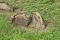 Worms juedischer Friedhof Heiliger Sand 018 (fcm).jpg