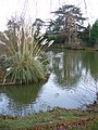 Worplesdon Place Lake - geograph.org.uk - 640604.jpg
