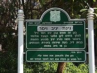 Yaniv Weiser Garden.jpg