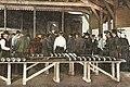 Zalmafslag Kralingsche Veer 1905.jpg
