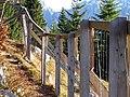 Zaunarbeit im Alpenpflanzengarten 03.jpg