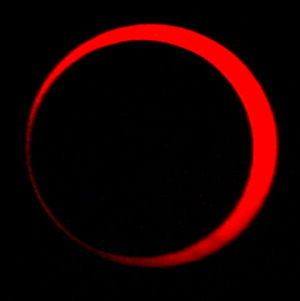 (closeup) Solar annular eclipse of January 15, 2010 in Bangui, Central African Republic.JPG