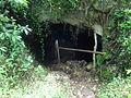 (lava tunnel (b2) El Chato Reserve, Santa Cruz Highlands, Galápagos.JPG