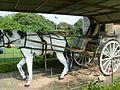 @ibneAzhar-Heritage Museum -Islamabad-Pakistan (31).JPG