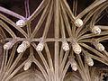 Église Saint-Christophe de Neufchâteau-Voûte à clés pendantes (1).jpg