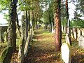 Židovský hřbitov v Trhovém Śtěpánově 7.jpg