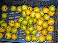 Žlutá jablka.jpg