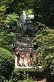 Алеї в ботанічному саду.jpg