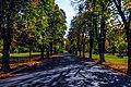 Борисовата градина.jpg