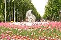 Весна у Парку.JPG