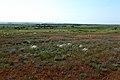 Вид в юго-восточном направлении - panoramio (12).jpg