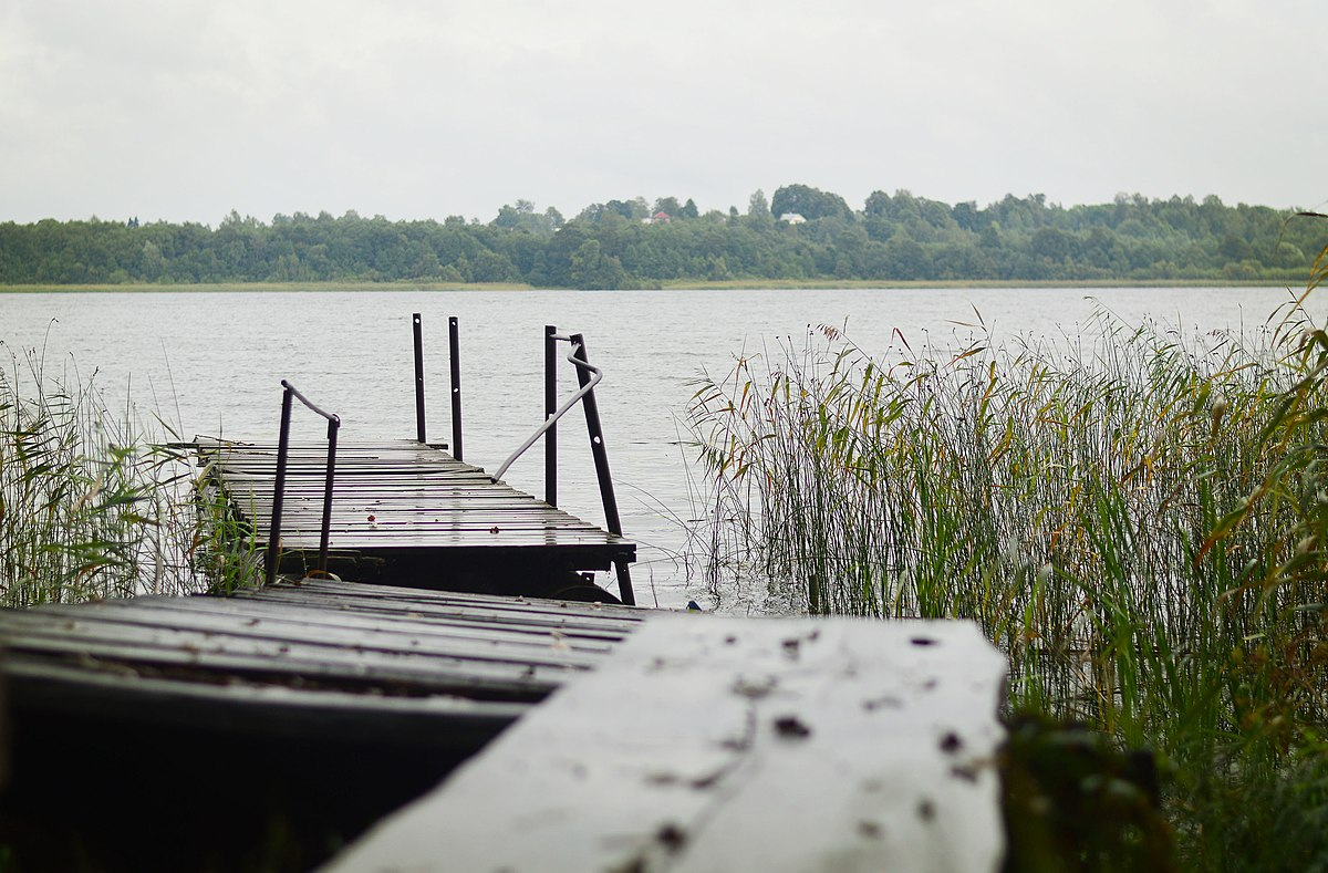 обсудите фотографом череменецкое озеро фото синдром такаясу