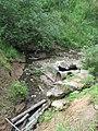 Деревлёвский ручей (Битцевский лес) летом 2008 года.jpg