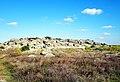 Каменная Могила над рекой Молочной.jpg