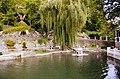 Лебедине озеро КП.jpg