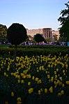 Парк имени Горького в Москве. Фото 24.jpg