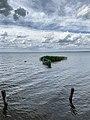Плещеево озеро в июне.jpg