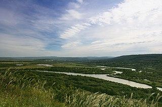 Nadezhdinsky District District in Primorsky Krai, Russia