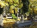 בית הקברות היהודי בקרקוב - קברים (1).jpg