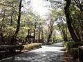 多摩北部医療センター散歩道 - panoramio.jpg