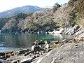 大理石海岸舘ヶ崎(ウミユリ化石地帯) - panoramio.jpg