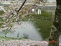 日本京都古蹟29.jpg