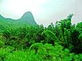 桂林市冠岩景区景色 - panoramio (23).jpg