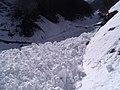 砂防堰堤を越える雪崩.jpg