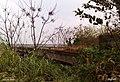 老铁桥西岸-By Bigball - panoramio.jpg