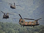CH-47JA(第12ヘリコプター隊).jpg