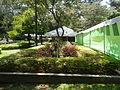 05704jfMidyear Orchid Plants Shows Quezon Cityfvf 31.JPG