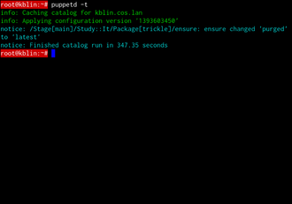 Puppet (software) - Puppet manually invoked on a client