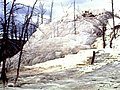 1980 Mammoth Hot Springs.jpg