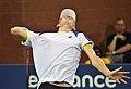 2013 US Open (Tennis) - Kevin Anderson (9645431335).jpg