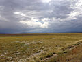 2014-09-08 14 28 20 View southwest across the Reese River Valley of Lander County, Nevada from U.S. Route 50.JPG