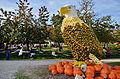2014 Kürbisfestival - Jucker Farm (Juckerhof) 2014-10-31 15-03-57.JPG
