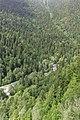 2014 Reliktowy Park Narodowy Rica, Rzeka Łaszypsie (01).jpg