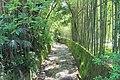 2014 Suchum, Ogród botaniczny (23).jpg