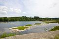 2015 05 24 Deutschland Baden-Württemberg Landkreis Sigmaringen Naturschutzgebiet Zielfinger Vogelsee (12).jpg