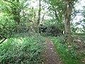 2018-05-14 Woodland footpath, Northrepps (1).JPG