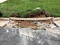 2021-07-13 12 55 42 A removed section of curb ready for replacement along Apple Barrel Court in the Franklin Farm section of Oak Hill, Fairfax County, Virginia.jpg