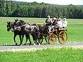 21te Rammenauer Schlossrundfahrt der Pferdegespanne (008).jpg