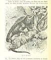 238 of '(Nach Ecuador. Reisebilder ... Zweite, vermehrte Auflage. Mit ... Holzschnitten, etc.)' (11180337526).jpg