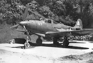 28th Fighter Squadron Bell P-39Q-20-BE Airacobra 44-3866.jpg