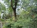 478 Chinesischer Garten.JPG