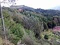 55051 Barga LU, Italy - panoramio - jim walton (2).jpg